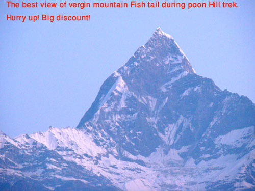 beautiful virgin mountain Fishtail seen during poon hill trek